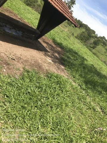 Fazenda em Niquelandia! - Foto 14