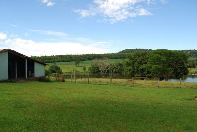 Fazenda com 12 alqueires em Terezópolis-GO  - Foto 7