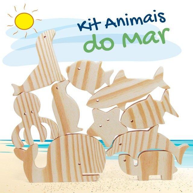 Animais do Mar - Foto 5