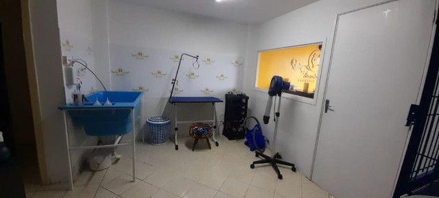 Vendo Banho e Tosa Completo em Canela RS!!! Oportunidade!! - Foto 2