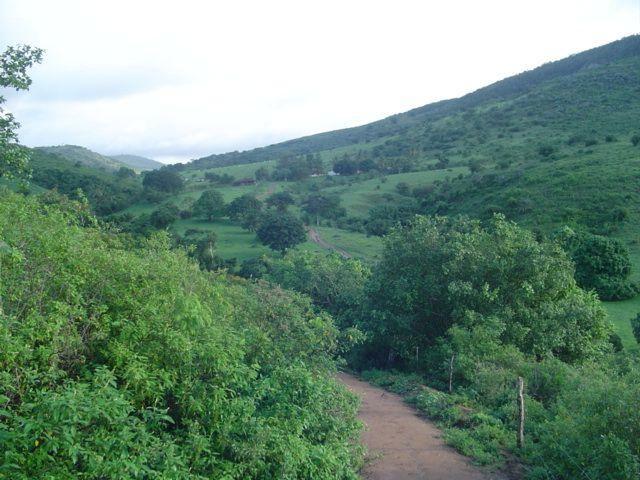 Vale Jiquiriçá-Fazenda - 800 Tarefas, analisa troca p\imóvel em Salvador - Foto 20