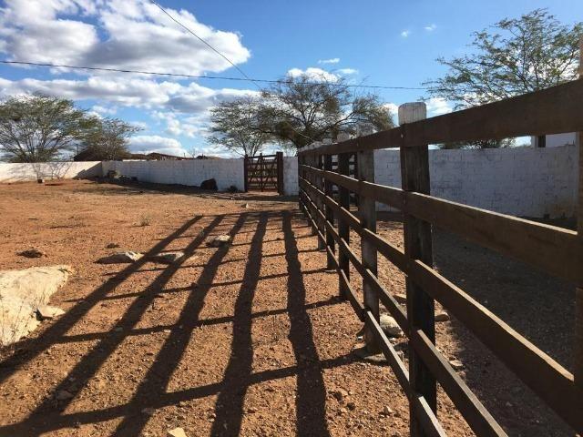 Ótima propriedade de 377 hectares,em Jataúba-PE, por apenas R$ 650 mil - Foto 4