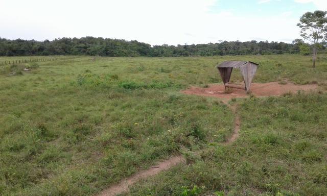 Fazenda em Roraima -São Luiz - Foto 2