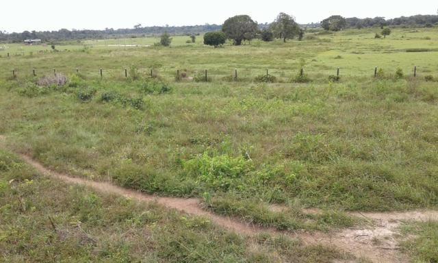 Fazenda em Roraima -São Luiz - Foto 8