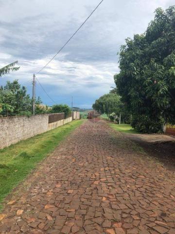 Chácara com 3 dormitórios à venda, 10000 m² por R$ 910.000,00 - Marialva - Marialva/PR - Foto 14