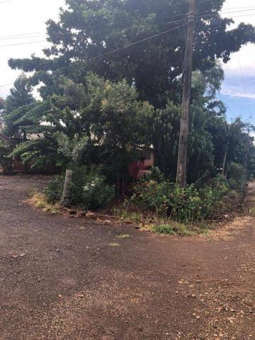 Chácara com 3 dormitórios à venda, 10000 m² por R$ 910.000,00 - Marialva - Marialva/PR - Foto 15