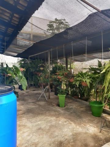 Casa à venda com 3 dormitórios em Parque amazônia, Goiânia cod:CR3165 - Foto 15