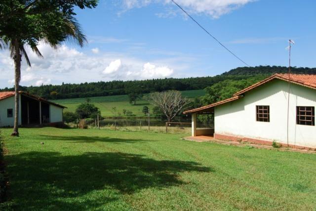 Fazenda com 12 alqueires em Terezópolis-GO