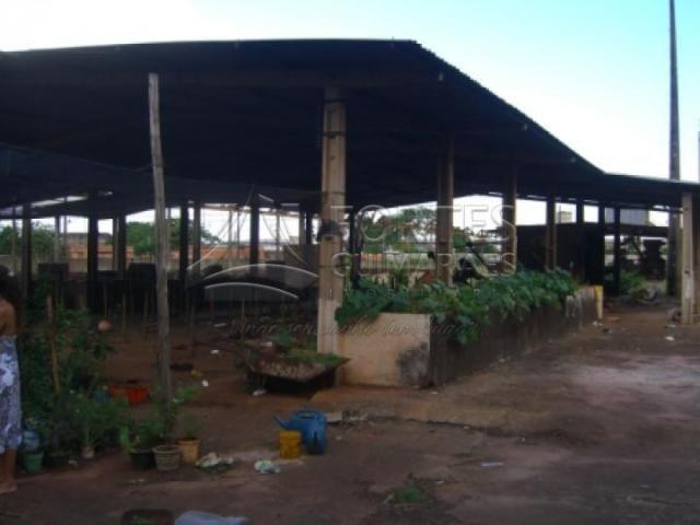 Chácara para alugar em Jardim aeroporto, Ribeirao preto cod:L15137 - Foto 6