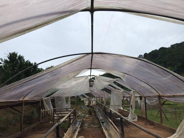 Arcos de estufa agrícola  - Foto 3