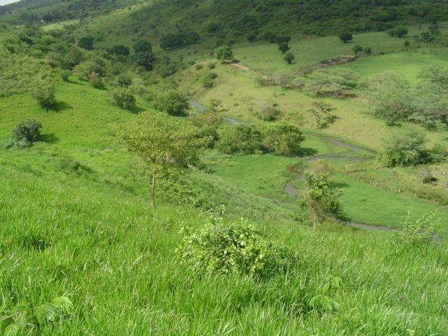Vale Jiquiriçá-Fazenda - 800 Tarefas, analisa troca p\imóvel em Salvador - Foto 9