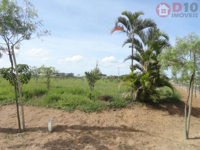 Terreno à venda, 440 m² - residencial açores - araranguá/sc - Foto 18