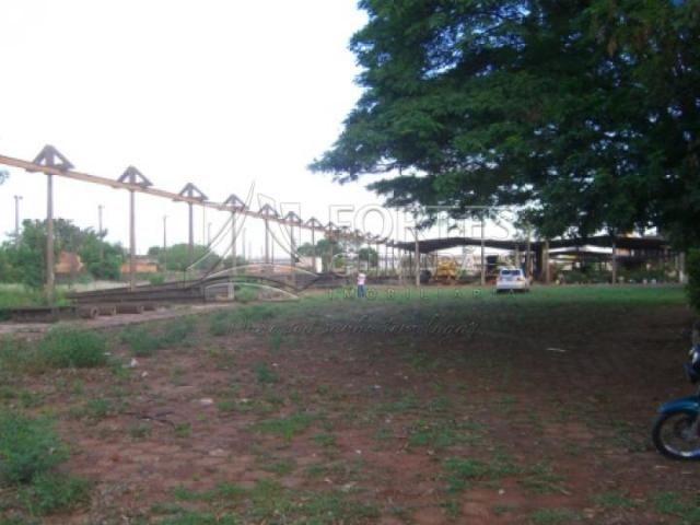 Chácara para alugar em Jardim aeroporto, Ribeirao preto cod:L15137 - Foto 2