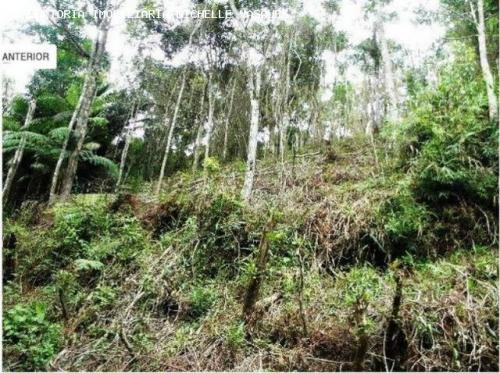 Terreno para venda em teresópolis, albuquerque