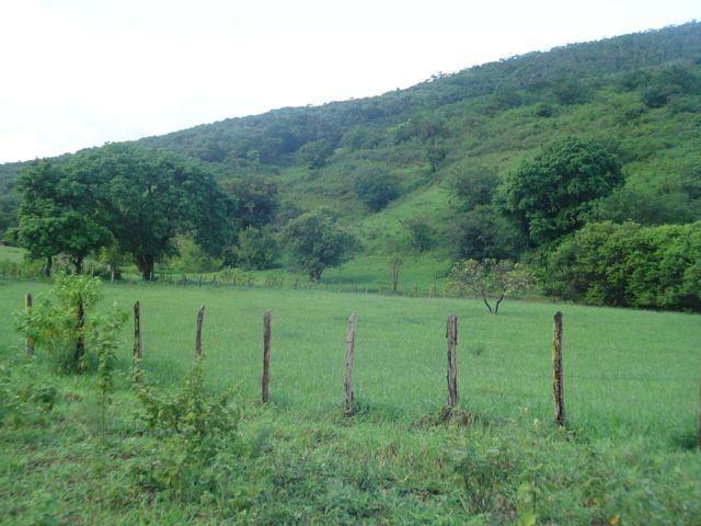 Vale Jiquiriçá-Fazenda - 800 Tarefas, analisa troca p\imóvel em Salvador - Foto 14