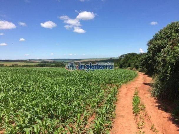 Fazenda à venda, 4982600 m² por R$ 18.000.000,00 - Centro - Santa Fé/PR - Foto 7