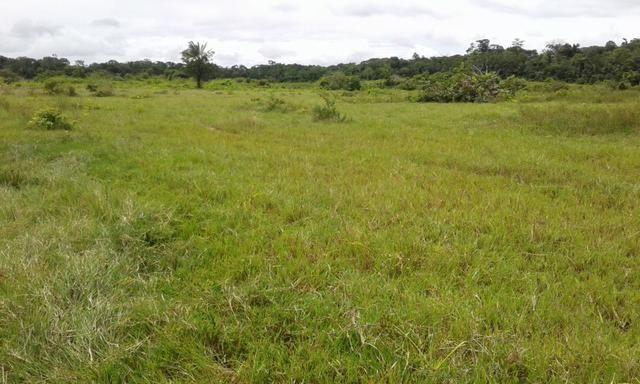 Fazenda em Roraima -São Luiz - Foto 3