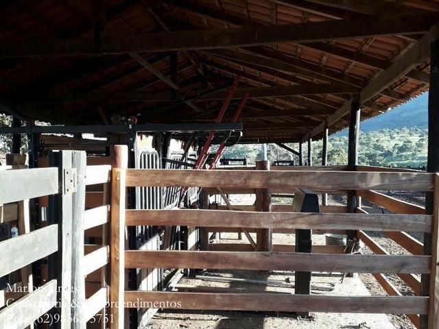 Fazenda em Niquelandia! - Foto 3