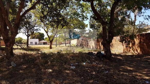 Terreno à venda em Jardim aureny iii, Palmas cod:116 - Foto 2