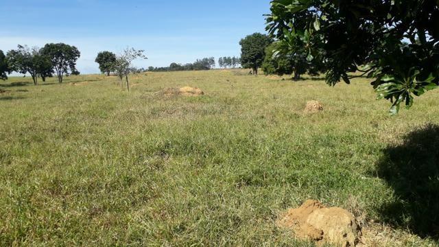 9 hectares terra região belo oriente - Foto 5