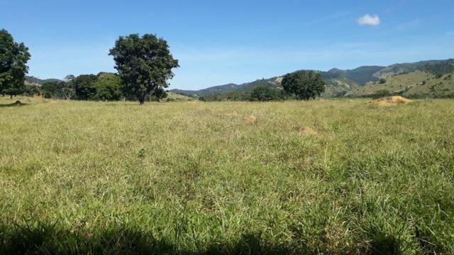 9 hectares terra região belo oriente - Foto 4