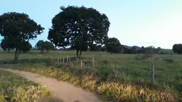 9 hectares terra região belo oriente - Foto 2