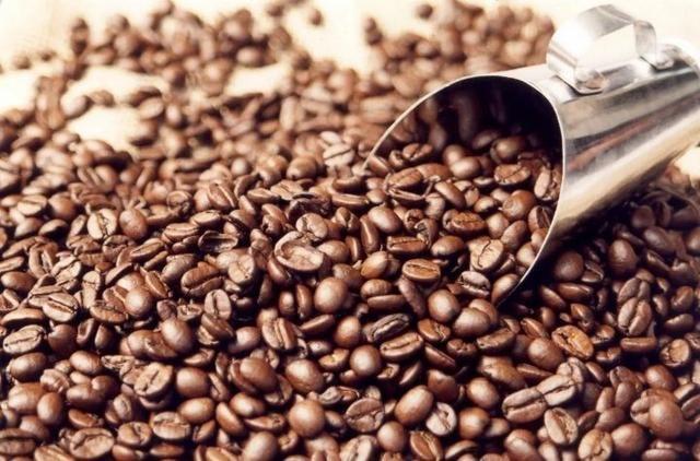 Café Torrado em grão -100% Arabica 5kg - Grãos Selecionados ...