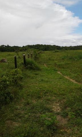 Fazenda em Roraima -São Luiz - Foto 6