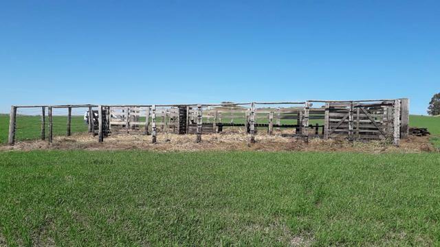 Vende-se ou permuta-se curral ( mangueira) para gado