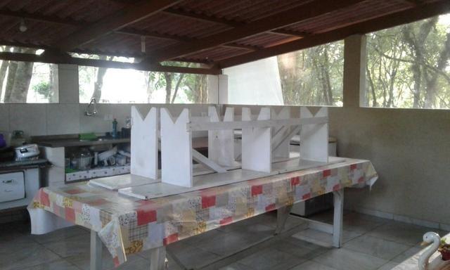 Vende-se chácara em Anta Magra - Quitandinha (cód. A354) - Foto 6