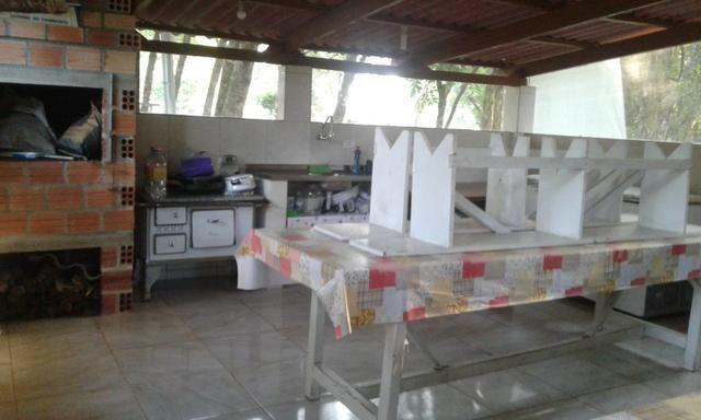 Vende-se chácara em Anta Magra - Quitandinha (cód. A354) - Foto 7