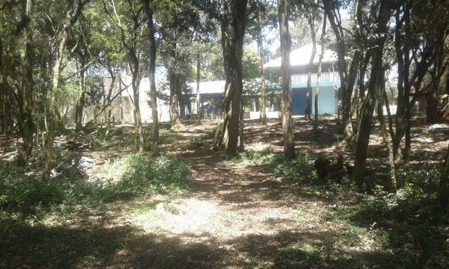 Vende-se chácara em Salso - Quitandinha (cód. A351) - Foto 13