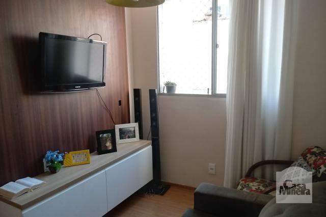 Apartamento à venda com 3 dormitórios em Caiçara-adelaide, Belo horizonte cod:264429 - Foto 4