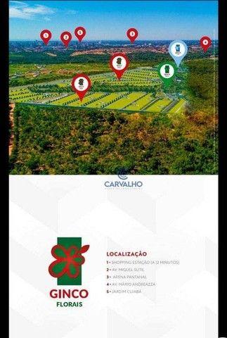 Terreno à venda, 250 m² por R$ 300.000,00 - Bairro Planejado Mirante do Pary, - Várzea Gra - Foto 18
