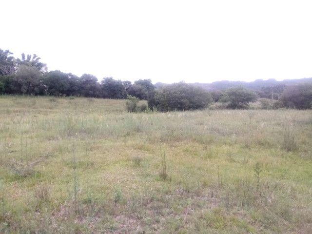2 hectares! Sonho de Sitio! - Foto 5