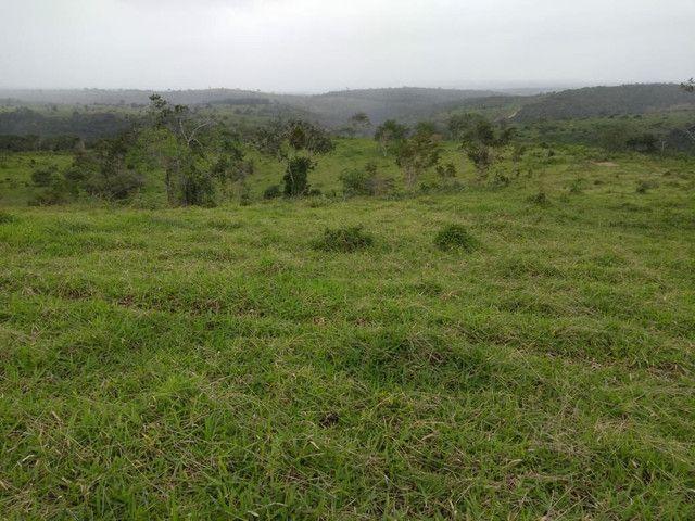 FAZENDA  em tapiramuta  - Foto 8