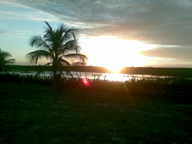 Fazenda 500ha - Foto 6