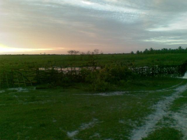 Fazenda 500ha - Foto 7