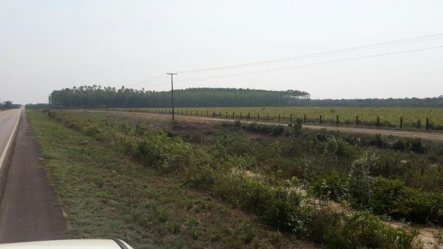 Vendo Linda Fazenda de frente a estrada - a 30 km de porto velho/Ro - Foto 7