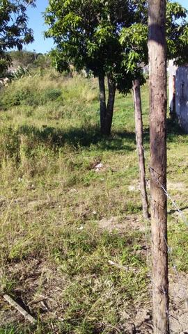 Lote em Monte Alegre (30X54) - Foto 4
