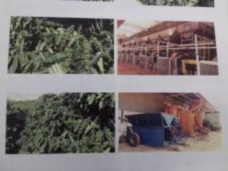 Fazenda Completa em Capelinha/MG - Foto 4