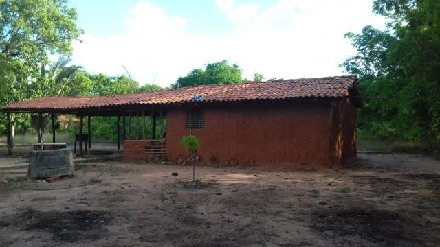 Vendo 2 dois sitio em Nazaria Teresina Piauí - Foto 5