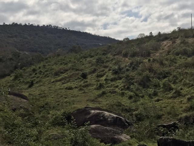 Fazenda em Minas - Foto 2