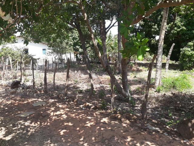 Terreno em barreirinhas - Foto 5