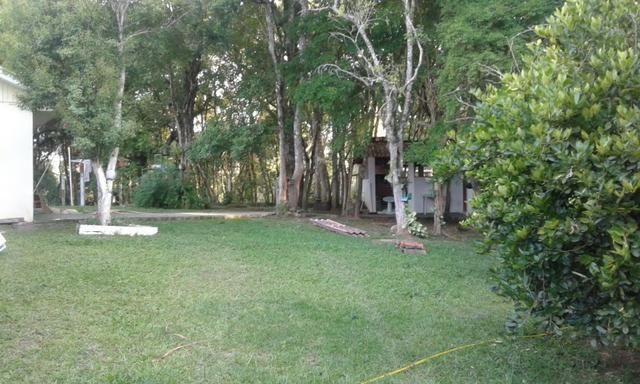 Vende-se chácara em Anta Magra - Quitandinha (cód. A354) - Foto 15