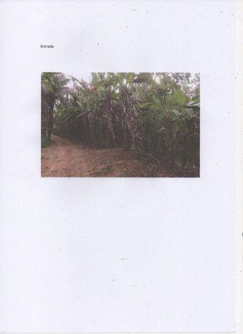 Chácara com 11000 mts 2 - Foto 2