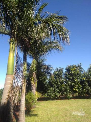 8046 | Chácara à venda em Munhoz De Melo, Munhoz De Melo - Foto 4