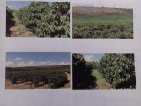 Fazenda Completa em Capelinha/MG - Foto 2