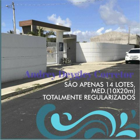 Lot. Flor das Ondas - Exclusivo no Barra Nova