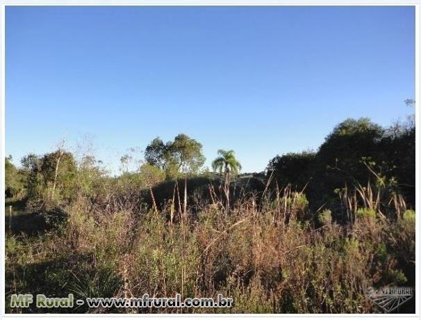 Área de terra com 3 hectares em Fagundes Varela (capela São José) - Foto 4